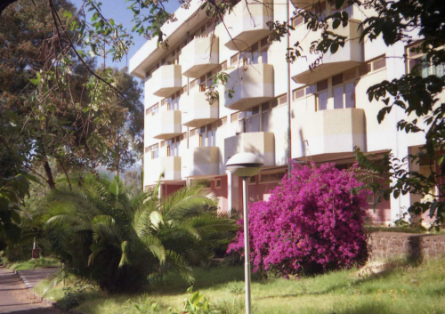 """<p>В январе 1097 года мне пришлось провести месяц в г. Аддис-Абеба. Нужно было запустить в работу электронный микроскоп, подаренный им нашей академией наук 10 лет назад. Ехать не хотелось (я был сильно простужен), да и работа оказалась непростой, но теперь вспоминаю с удовольствием и страну ,и эфиопских коллег, и наших ученых, которые там работают. Читайте также <a href=""""http://agbogdanov.ru/poetry/view/169"""" target=""""_blank"""">Эфиопский дневник</a>&nbsp;в разделе Проза и стих <a href=""""http://agbogdanov.ru/poetry/view/21"""" target=""""_blank"""">Эфиопия</a>&nbsp;в разделе МГУ и окрестности</p>"""